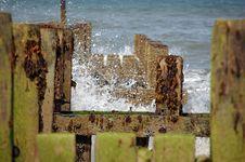Free Seashore Stock Photo - 3859470
