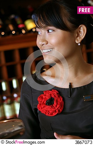 Free My Favorite Bartender/butler/waiter Stock Photos - 3867073