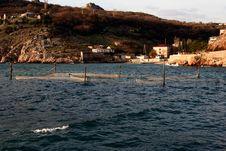 Free Wave In Crimea Stock Photos - 3861273