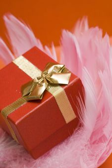 Red Gift Box On Pink Feather Stock Photography