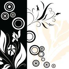 Free Floral Background Illustration Stock Photo - 3866610