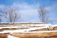 Free Snow Covered Stack Of Wood Stock Image - 3867051