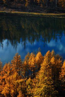 Free Lake And Trees Stock Photos - 3867823