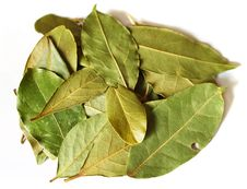 Free Some Bay Leaves On A White Stock Photo - 3868280