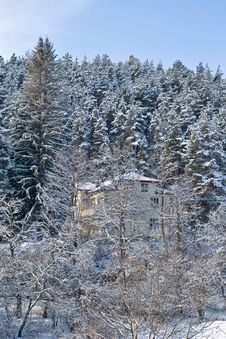 Free Chalet In The Forest Royalty Free Stock Images - 3868589