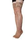 Free Woman&x27;s Legs In Nylon Stockings Stock Photography - 38643712