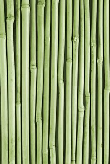 Free Background From A Bamboo Royalty Free Stock Images - 3871339