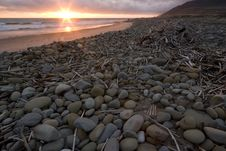 Driftwood And Stones On Beach At Sunset Stock Photos