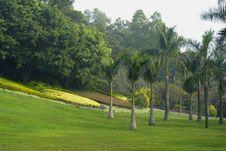 Free Landscape Of Park Stock Photography - 3874842