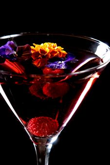 Free Martini Royalty Free Stock Photos - 3874868