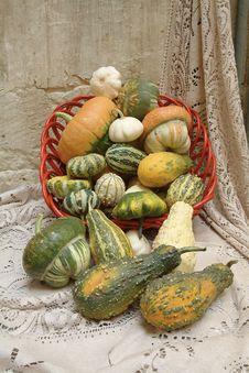 Free Decorative Pumpkins Stock Photo - 3876650