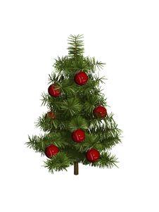 Free Pine Royalty Free Stock Photo - 3876755
