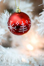 Free Bauble Royalty Free Stock Images - 3887829