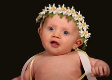 Free Adorable Little Angel Royalty Free Stock Image - 3883306