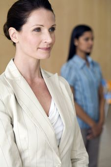 Free Businesswoman With Colleague Stock Images - 3883654