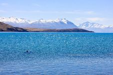 Free Lake Tekapo Royalty Free Stock Image - 3884826