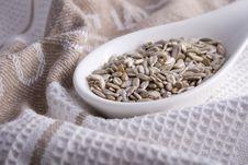 Free Pumkin Seeds Royalty Free Stock Image - 3889666
