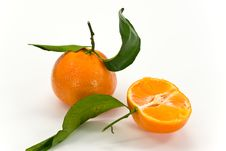 A Fresh Tangerine - Close Up Stock Photography