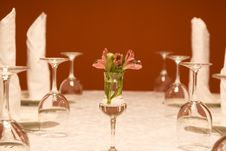 Free Utensils - Wine-glasses And Plates On A Table Royalty Free Stock Image - 3894696