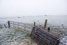 Free Winter Scene Stock Photography - 3895002