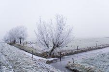 Free Winter Scene Royalty Free Stock Photography - 3895007