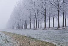 Free Winter Scene Stock Images - 3895024