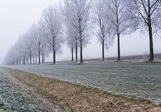 Free Winter Scene Stock Photos - 3895043