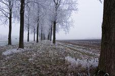 Free Winter Scene Stock Photography - 3895062
