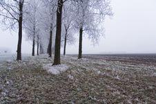 Free Winter Scene Stock Images - 3895064