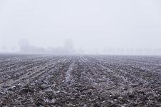 Free Winter Scene Royalty Free Stock Image - 3895066
