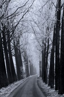 Free Winter Road Stock Photo - 3895150