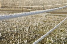 Free Paddock Fence In Winter Stock Image - 3895351