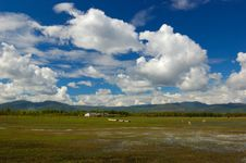Free Clouds On The Marshland Stock Photography - 3895472