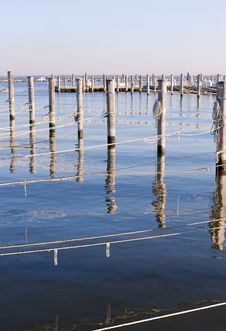 Wooded Dock Poles And Ropes. Vertical Royalty Free Stock Photo