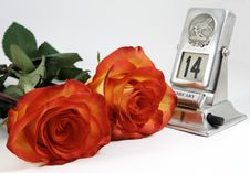 Free Two Beautiful Roses For Darling Stock Image - 3897721