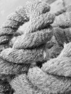 Free Worn Out Rope Stock Photos - 3897733