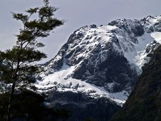 Free Milford Sound Stock Images - 3898544
