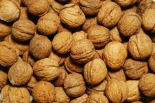 Free Close Up Of Walnuts Royalty Free Stock Photo - 3899635