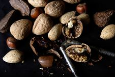 Free Cracked Mixed Nuts Stock Photography - 390472