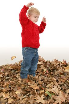 Free Adorable Two Year Old Playing In Leaves Royalty Free Stock Photo - 392285