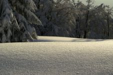 Free Snowdrift Royalty Free Stock Image - 393786