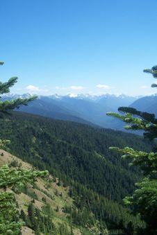 Free Pacific Northwest Mountains Royalty Free Stock Photos - 398218