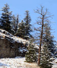 Free Mountain Snow Royalty Free Stock Photos - 398298