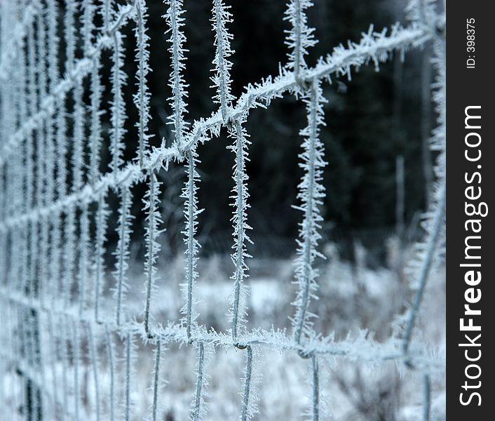 Frozen fence, deep focusing