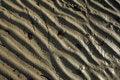 Free Sand Waves Royalty Free Stock Image - 3909906
