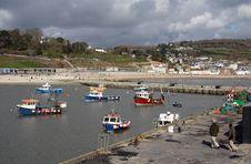 Free Lyme Regis Harbour Stock Images - 3902094