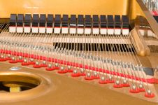 Free Inside Baby Grand Piano Royalty Free Stock Image - 3905706