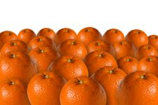 Free Oranges Stock Image - 3905961