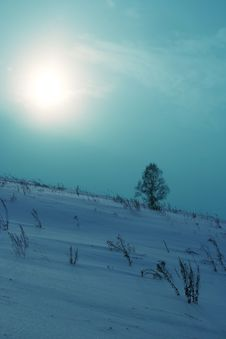 Free Winter. Stock Photos - 3905993