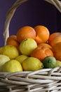 Free A Basket Of Citrus Fruit Stock Image - 3911911